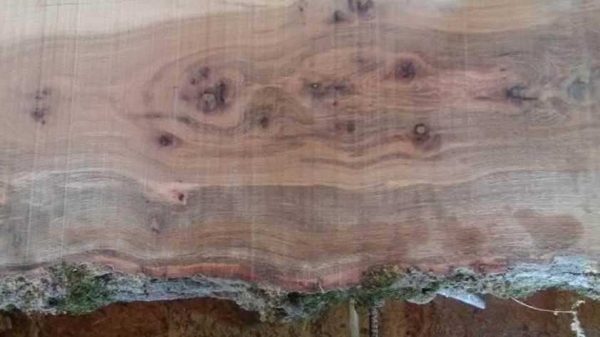 Дъскорезница Балван – Цех за обработка на дървен материал
