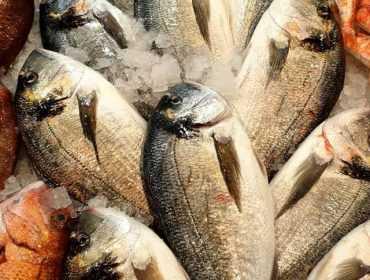 Магазин за прясна риба и гръцки специалитети в София | Харис Фиш